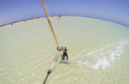 Kitesurfing with mangrove trees in the back