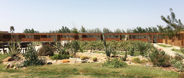 The Kite Camp in Hamata